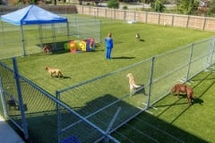 Riverbark Pet Retreat