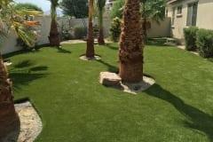 Gorgeous, Dog Friendly Backyard in Indigo, California by ForeverLawn Pacific Coast