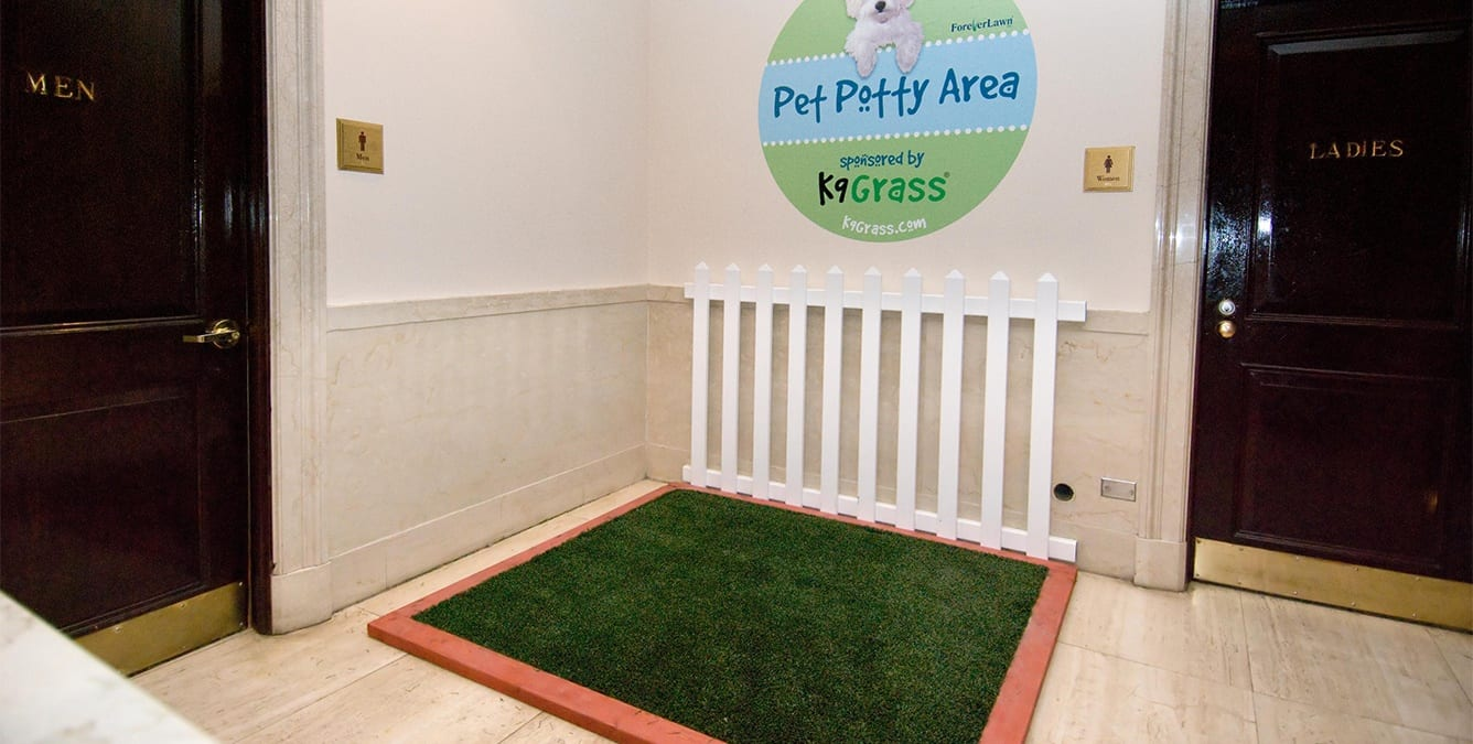 pet relief area