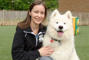 amy-affectionate-pet-care