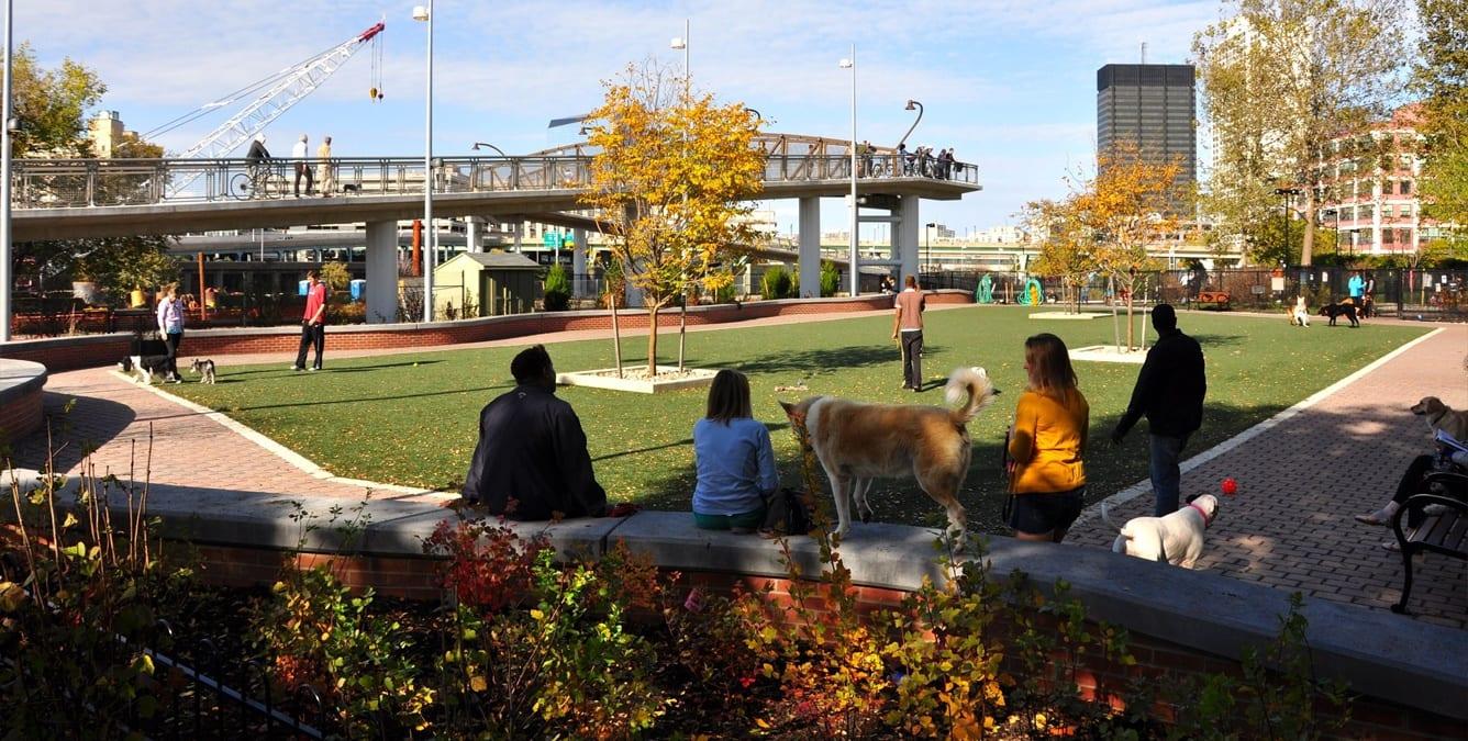 dog-parks-16
