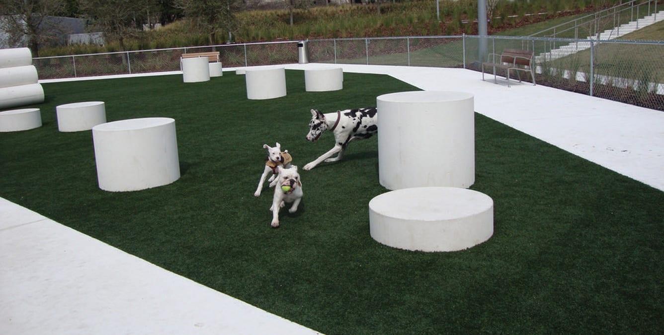 dog-parks-4