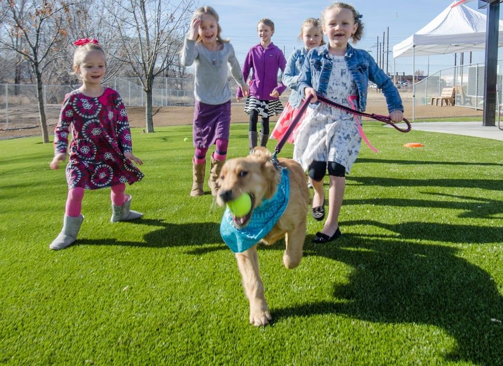 dog frolicking with children in k9grass
