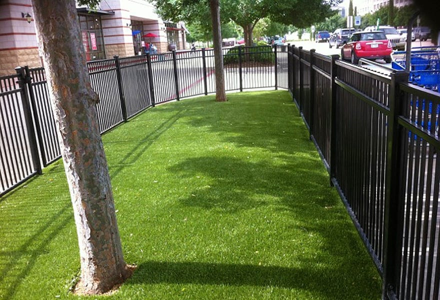 synthetic grass at petsmart