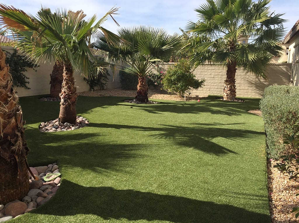 Lush residential backyard with K9Grass by ForeverLawn expertly landscaped around palm trees