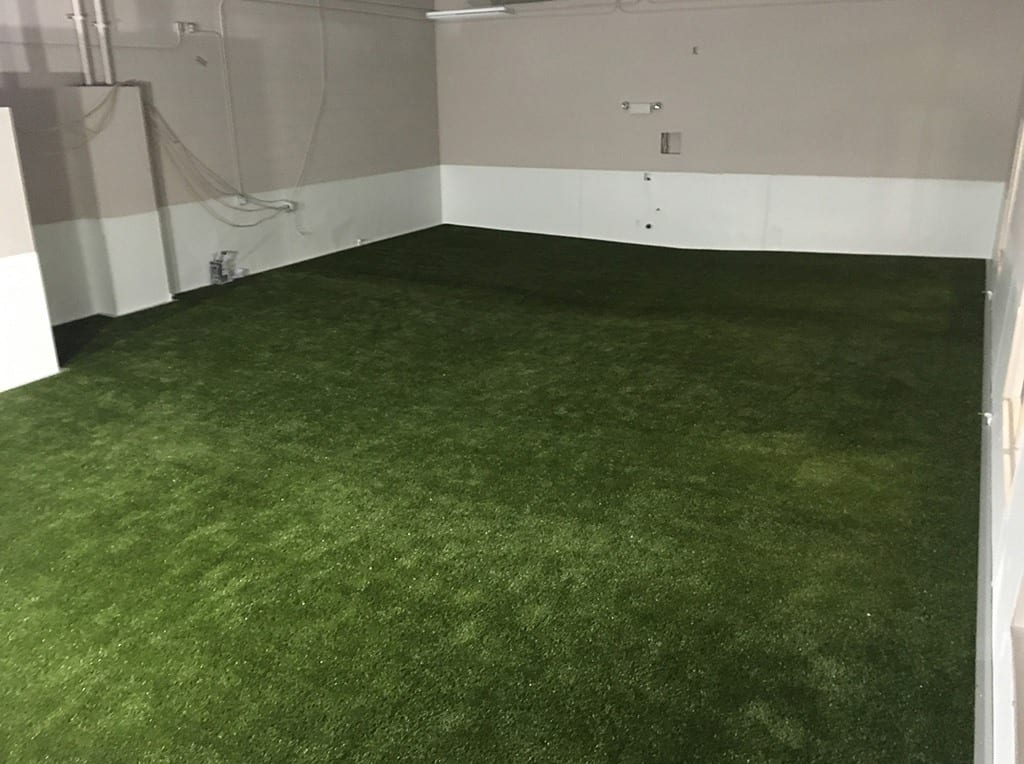 Henderson Pet Resort indoor K9Grass play and potty area for dogs