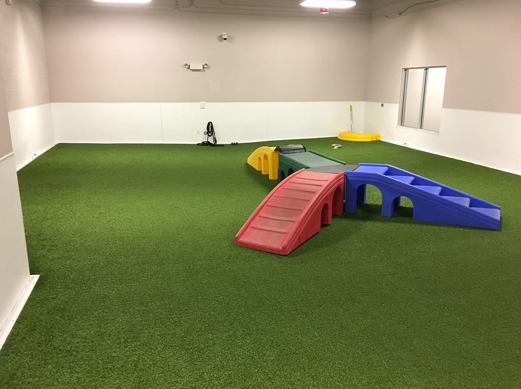 Henderson Pet Resort indoor dog play area with K9Grass by ForeverLawn