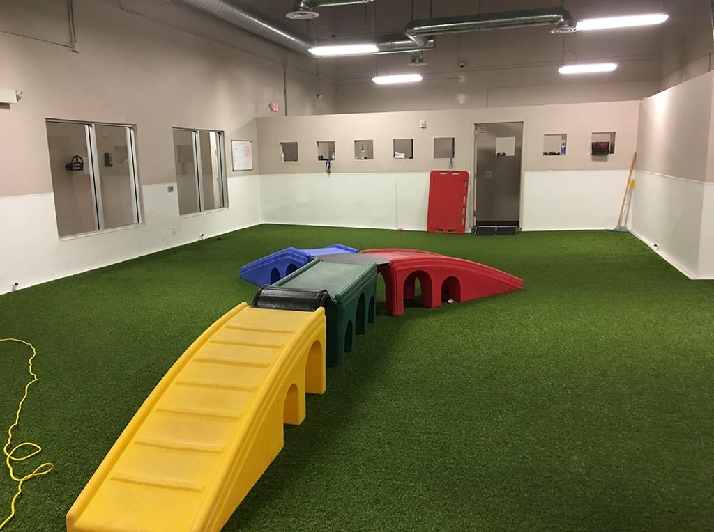Henderson Pet Resort indoor K9Grass dog play area with slides