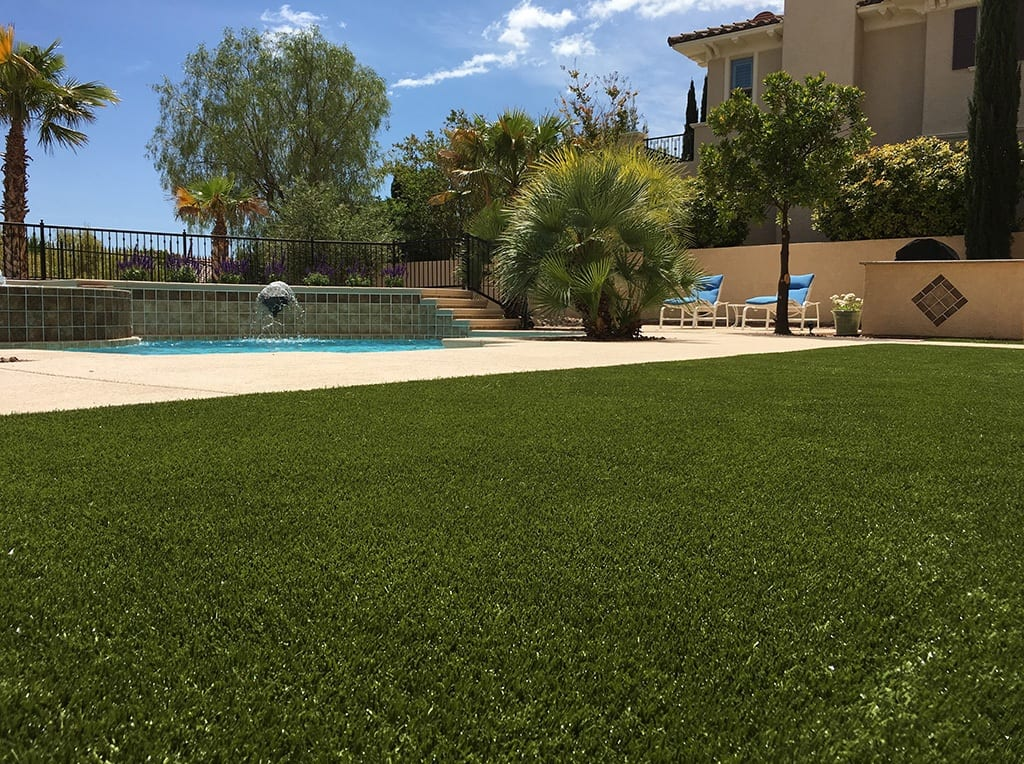 Close up of K9Grass installed in Las Vegas residential backyard
