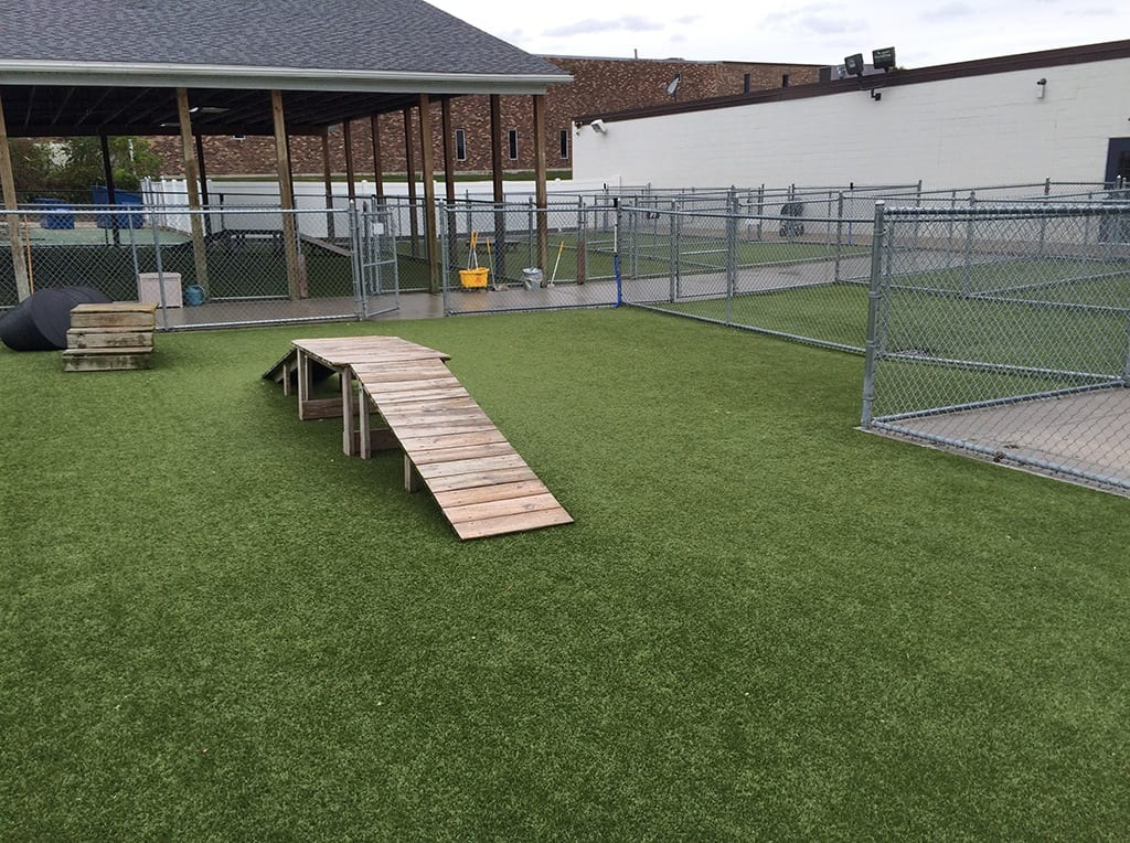 Dog run with ramp with K9Grass installed by ForverLawn Southwest