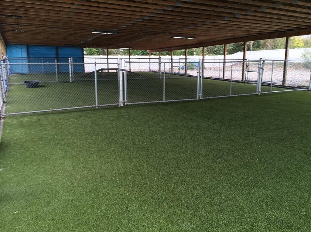 Covered dog play area with K9Grass by ForeverLawn installed
