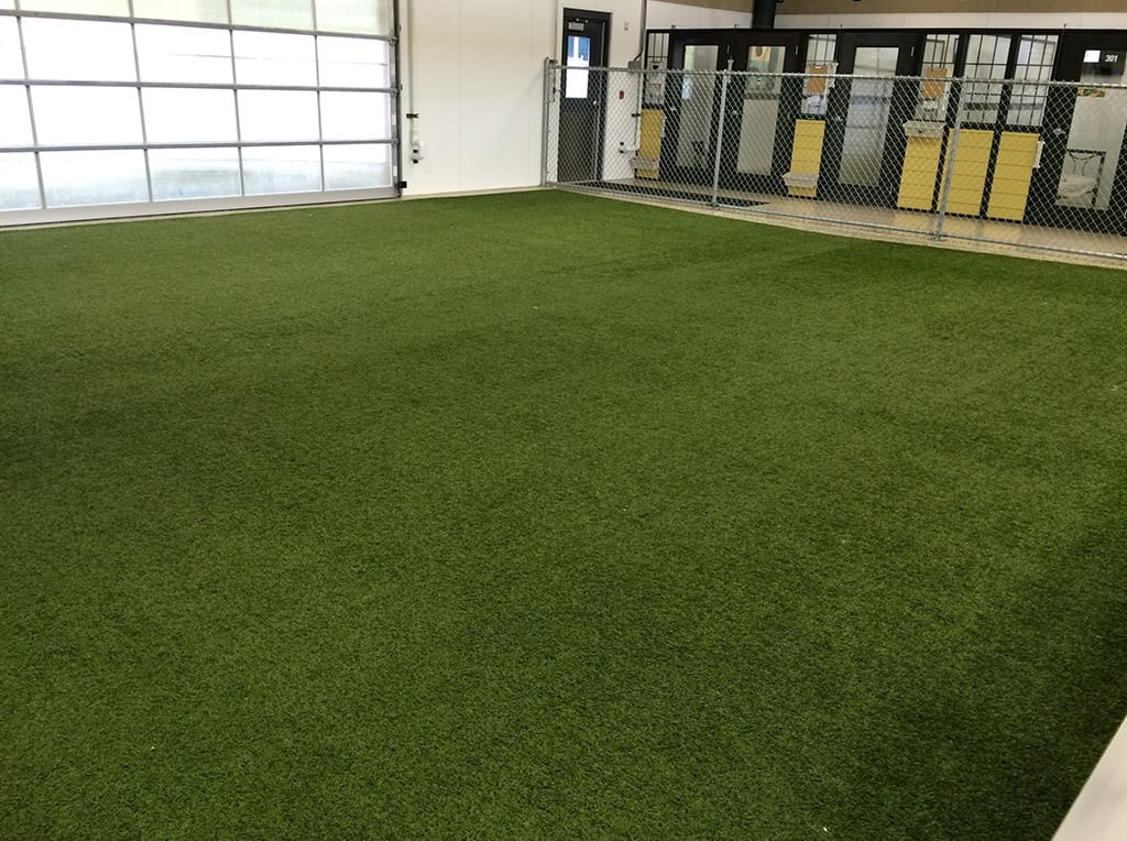 Indoor dog run area with K9Grass installed
