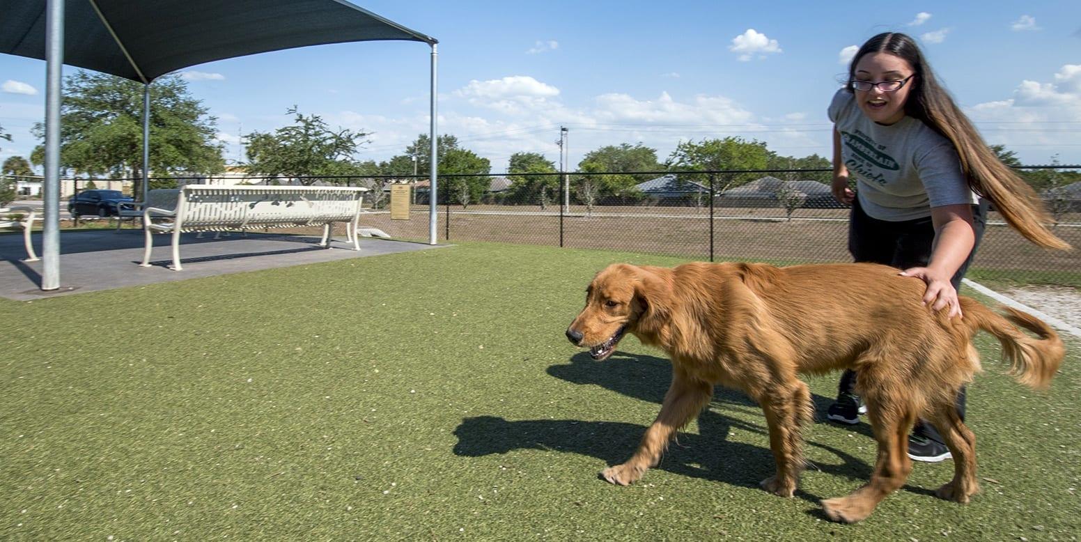 Northwest Dog Park