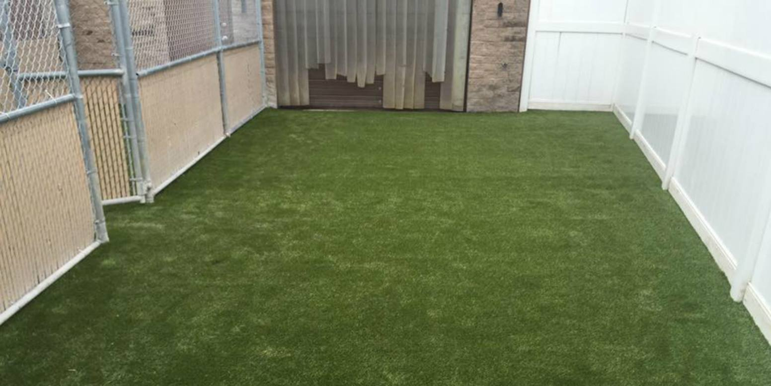 K9Grass by ForeverLawn installed at Camp Bow Wow in Bedford Heights, OH