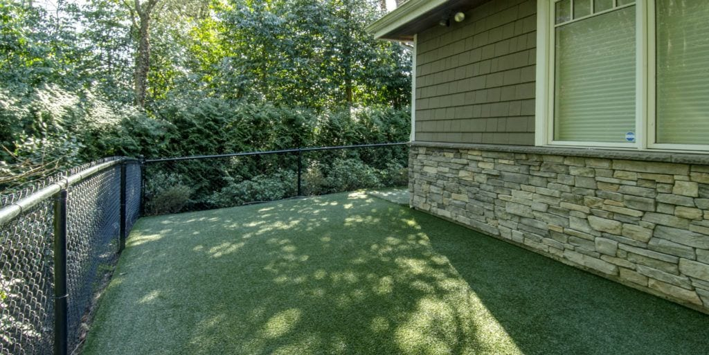 Residential backyard for dogs with K9Grass Classic by ForeverLawn in Meydenbauer Bay, Washington