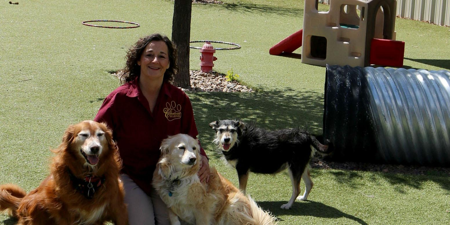 Dogs playing on K9Grass Classic by ForeverLawn with owner Dawn Hallgren of Le Chateau Pet Resort in Amarillo, TX