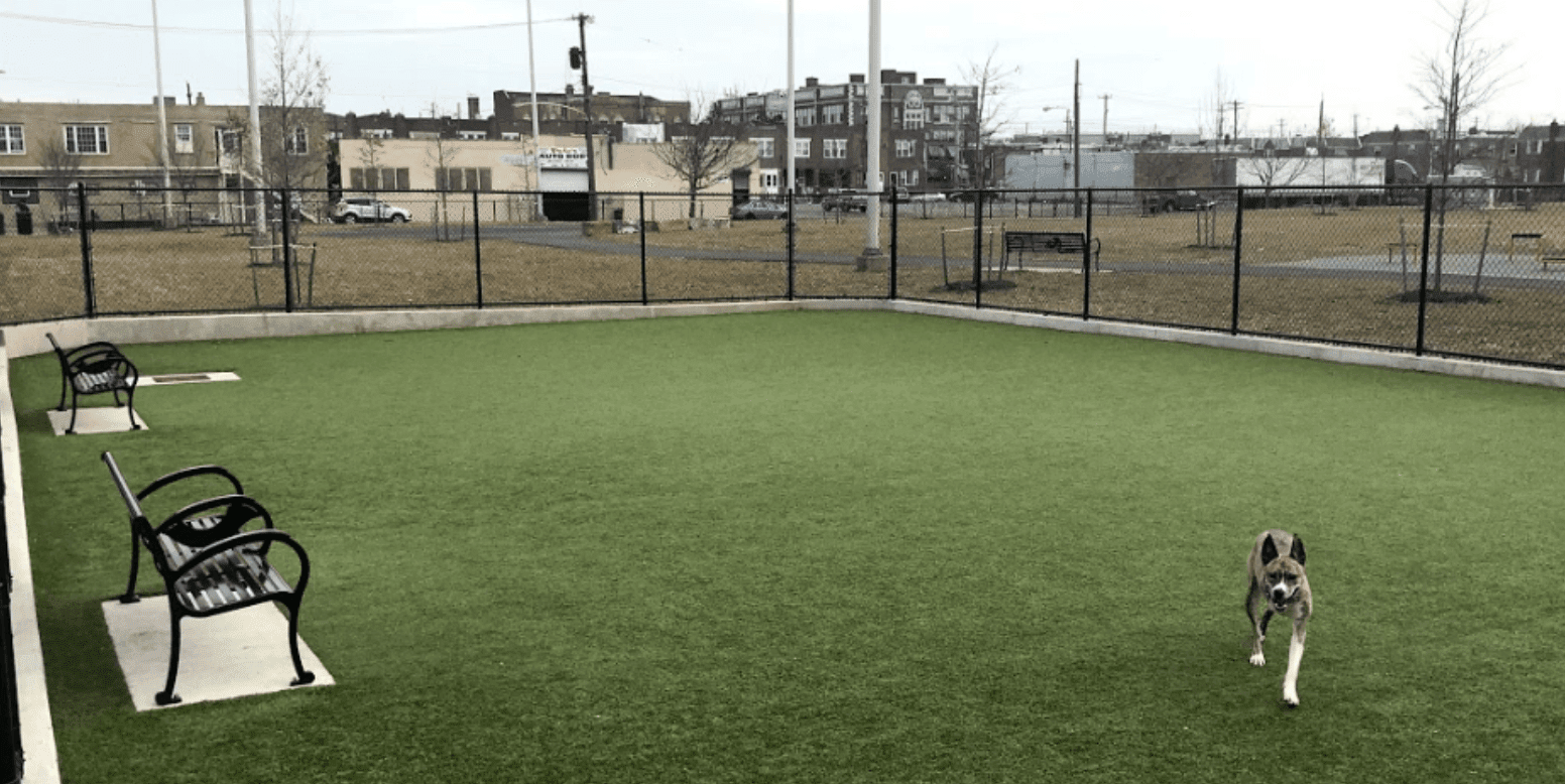 Lanier Playground Dog Park in Philadelphia, PA, featuring K9Grass by ForeverLawn
