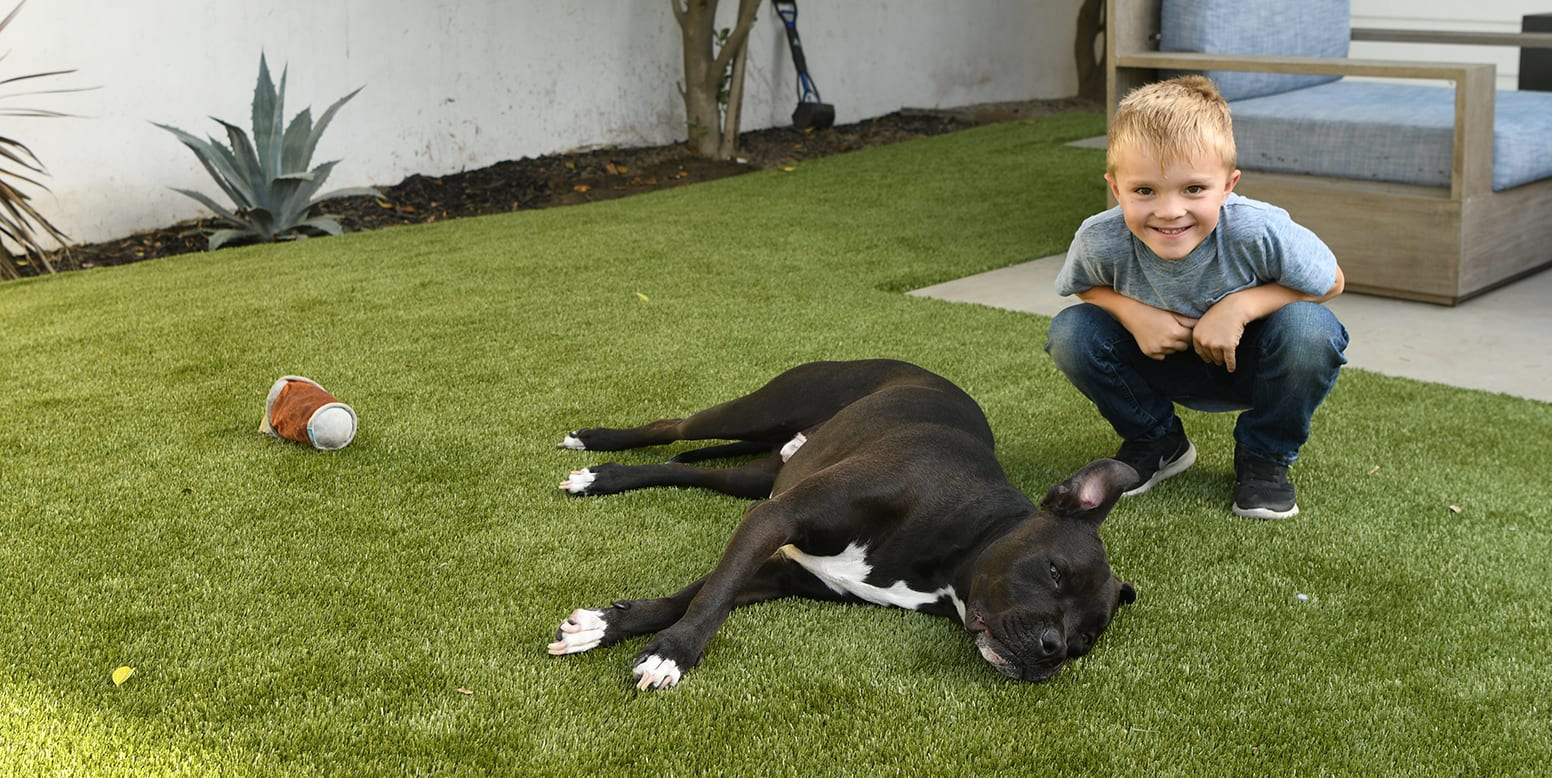 Dog and Boy on K9Grass synthetic turf residential backyard in Sherman Oaks, CA