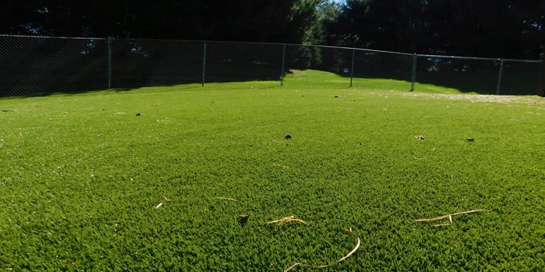 K9Grass synthetic turf at North Canton, Ohio, residence.