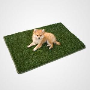 Dog Potty Grass Replacement - 2x3 K9Grass Mat