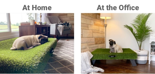at home and at the office